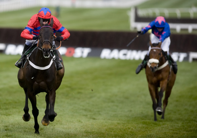 Cheltenham New Year Race