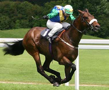 horseracing