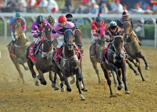 Good horse Race